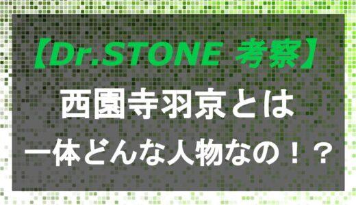 ドクターストーンの西園寺羽京はどんな人物?活躍していたのはいつ!?